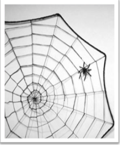 Google Spiders