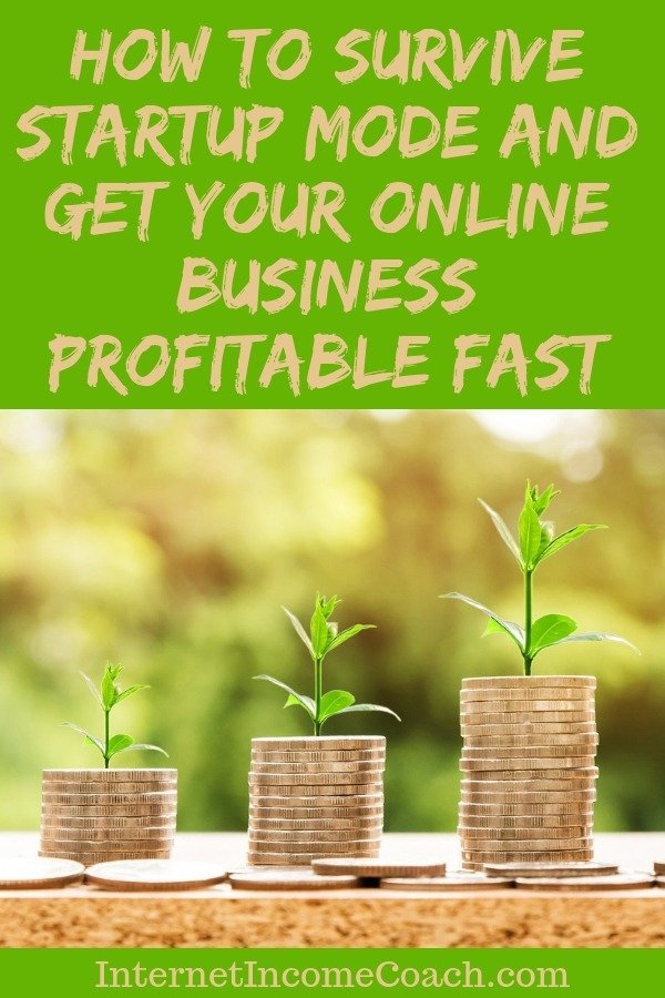 How to survive start-up mode and get your online business profitable fast.